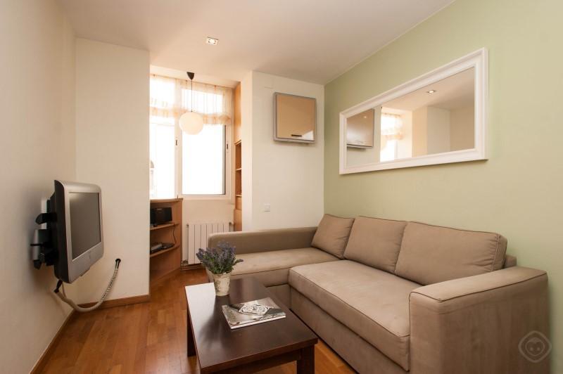 Gracia Garden apartment Barcelona photo 31816042