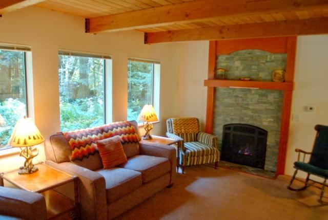 Mt. Baker Lodging Cabin #67 – HOT TUB, FIREPLACE, BBQ, PETS OK, D/W, SLEEPS-5! photo 60634