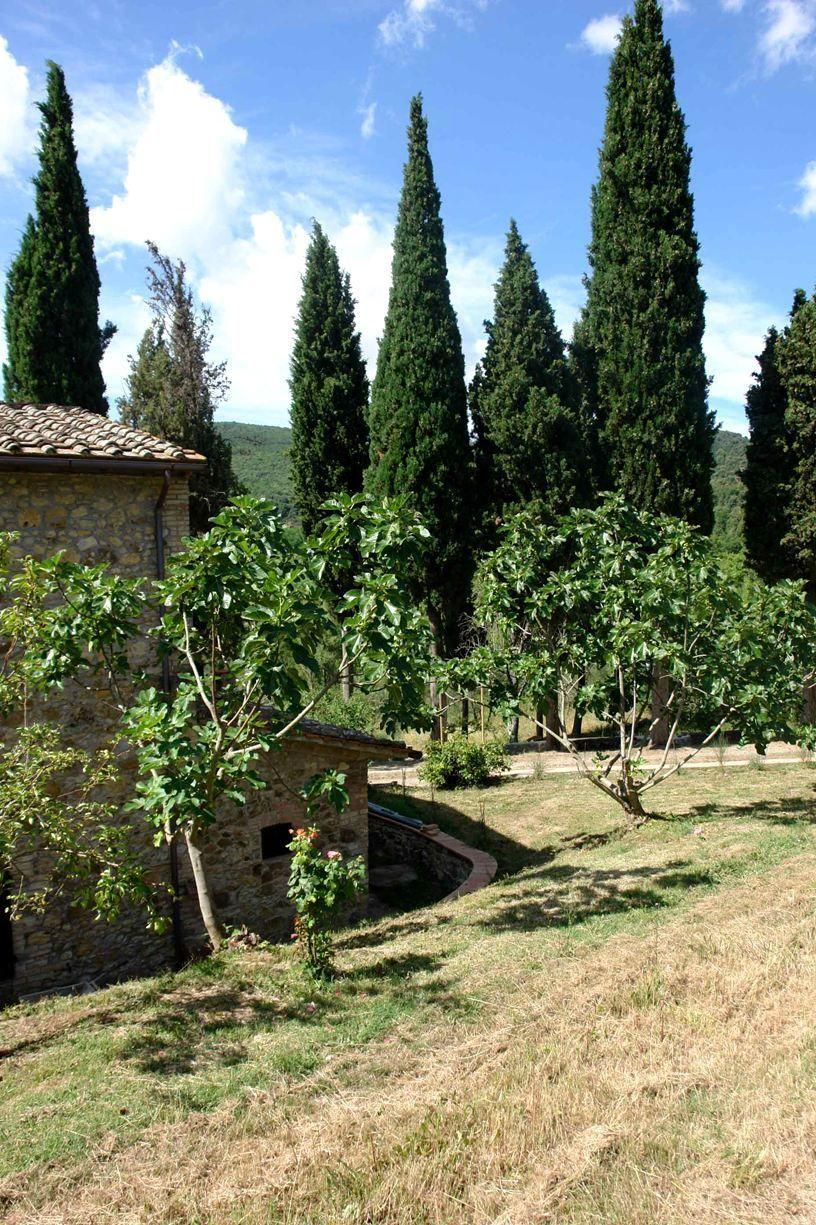 Apartment Tenuta Le Sodole - Holiday Home Il Glicine photo 31807866