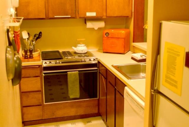 Mt. Baker Lodging Condo #85 – FIREPLACE, WASHER/DRYER, DISHWASHER, SLEEPS 4! photo 60847