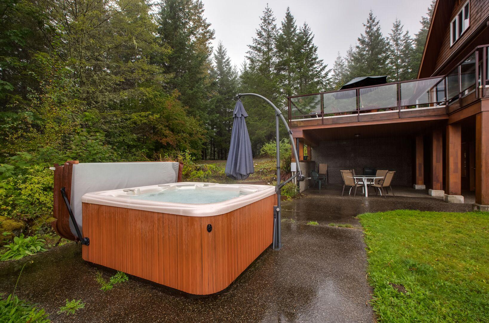 Apartment Mt  Baker Lodging Ensuite  15  ndash  MT VIEWS  HOT TUB  PETS OK  SLEEPS 6  photo 21433665