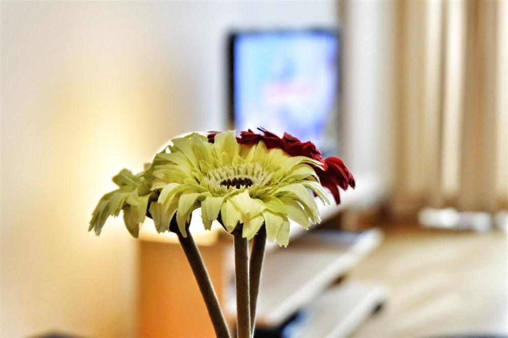 Apartment Opera 503 photo 31625423