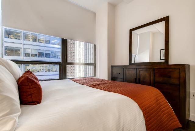 Luxury Apt in the heart of the Financial District photo 53028