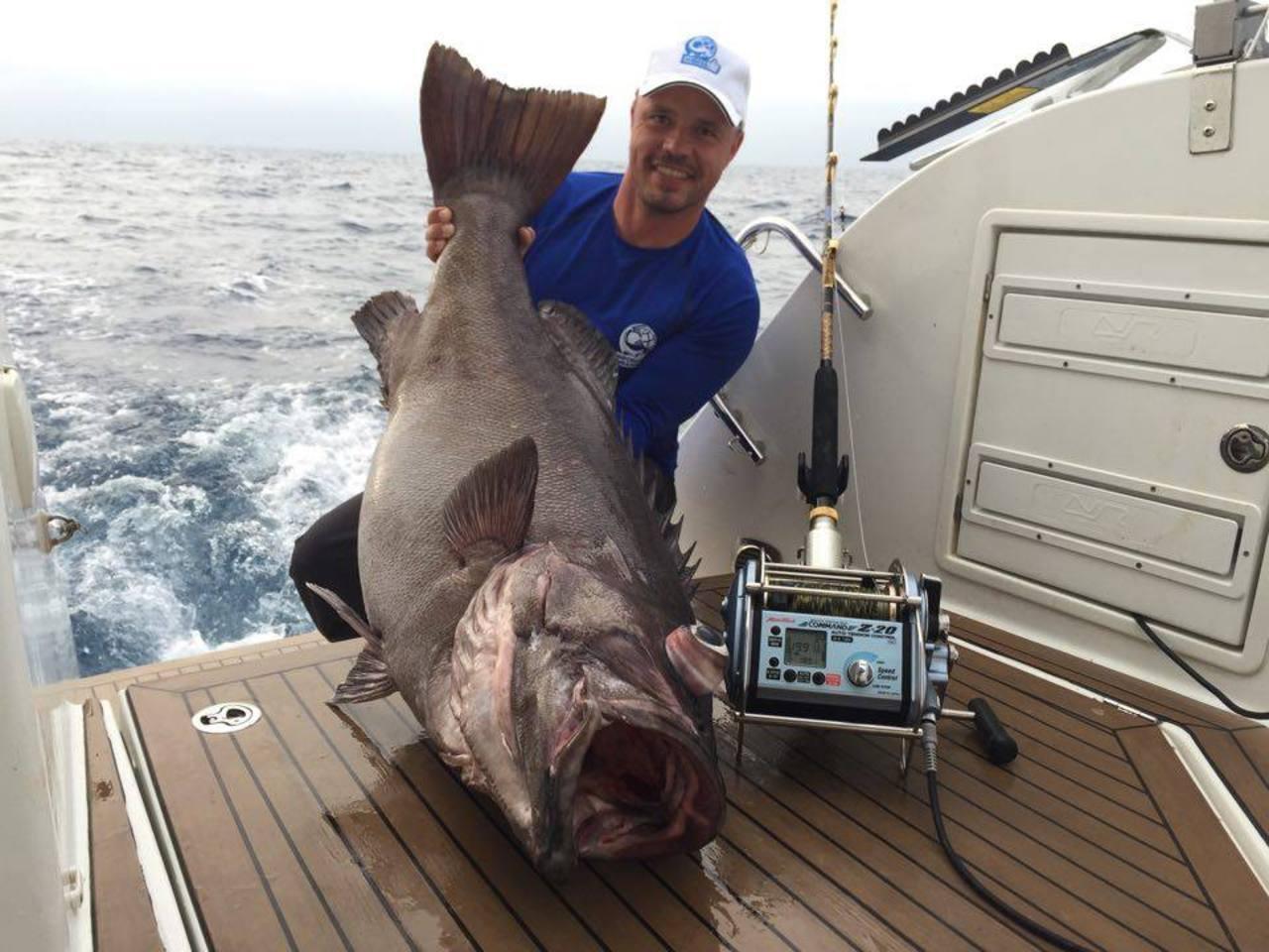 Apartment Professional fishing trip in Alanya photo 4843212
