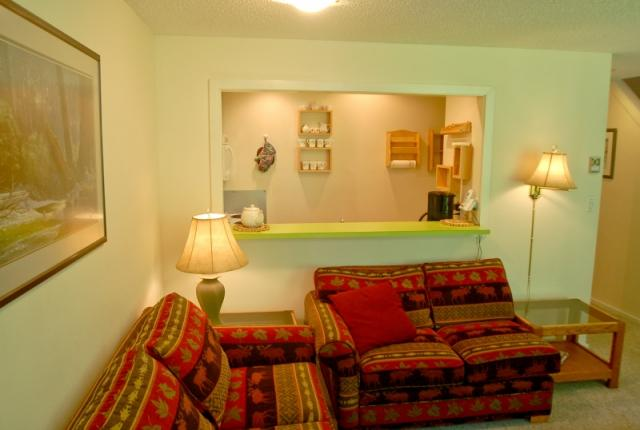 Mt. Baker Lodging Condo #38 – FIREPLACE, DISHWASHER, W/D, SLEEPS-6! photo 60064
